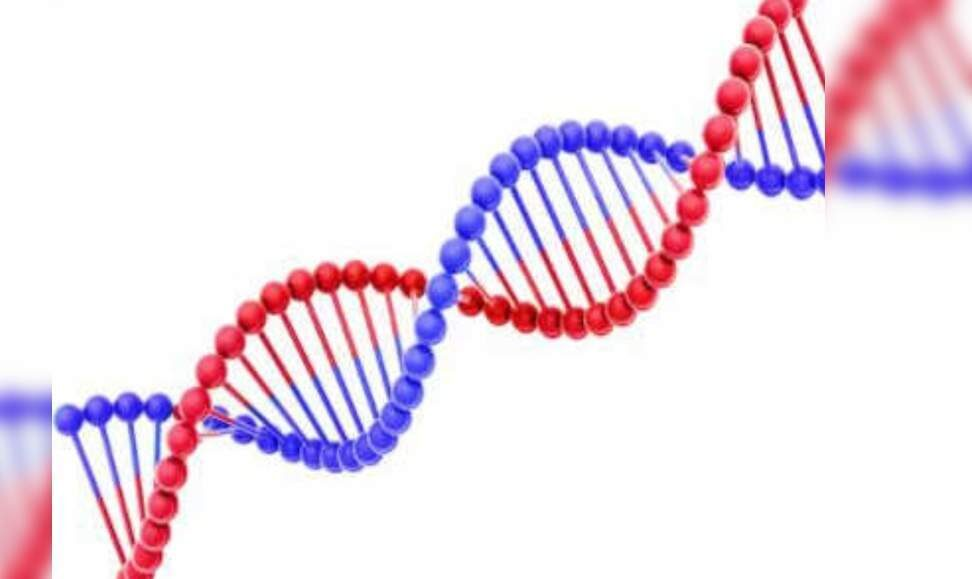 Scientists finish sequencing 100% of human genome – Times of