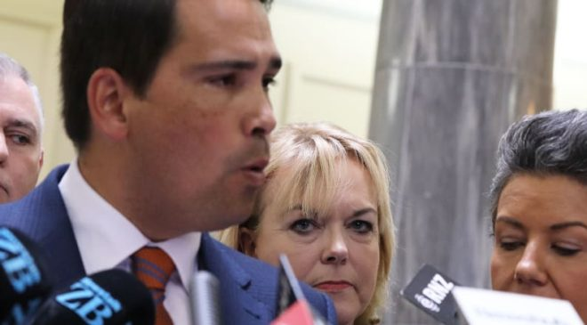 Judith Collins could make Machiavelli proud