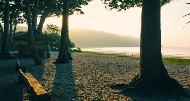 A beautiful view of Radhanagar beach in Havelock Island, Andaman and Nicobar Islands with trees, bench and a hut for a relaxing beach view.