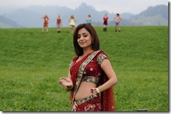 Nisha-Agarwal-hot in saree