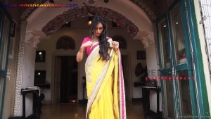 इंडियन रंडी साड़ी ब्लाउज में मोटे मोटे बोबे दीखते हुए Indian Randi In Yellow Saree Xxx (11)