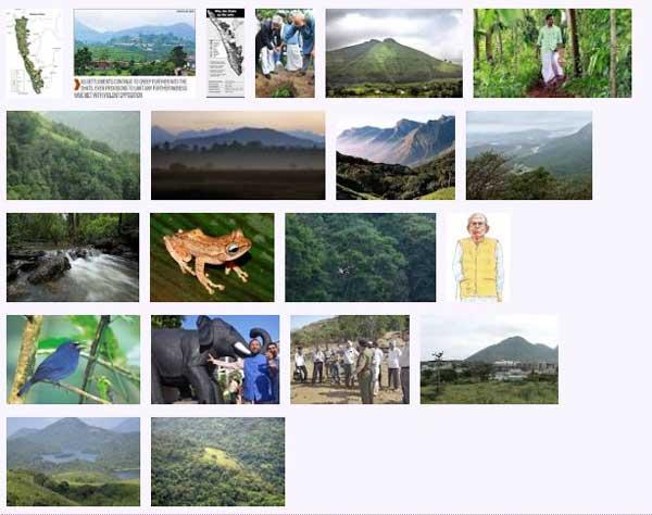 west_ghats_ecology_animals_screenshot_05