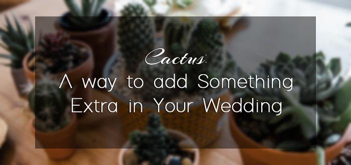 Cactus-themed-wedding