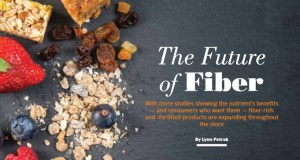 The Future of Fibre