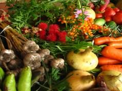 The Age of Organics