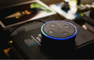 Conversational Commerce: Why consumers are embracing voice assistants in their lives