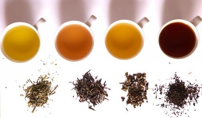 Luxmi Tea to open 100 Makaibari stores across India in next three years