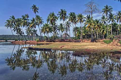 Chorao Island Goa