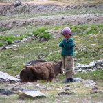 Boy with a Yak
