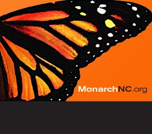 Monarch Branding