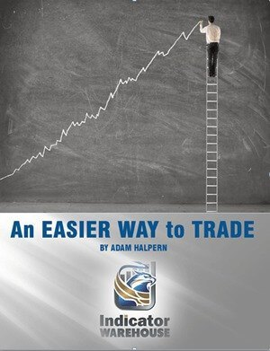 Learn to Trade with our NinjaTrader Trading Software