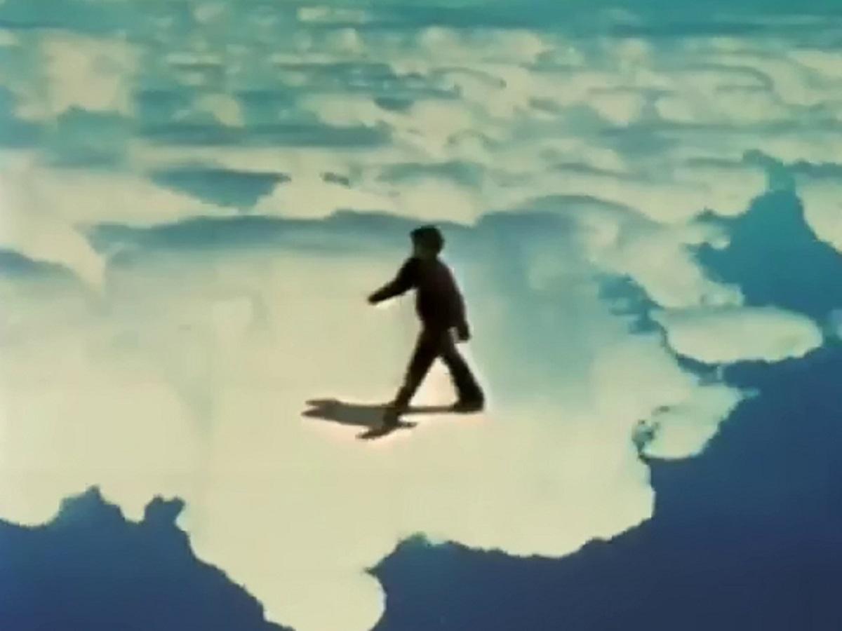 Animali - The Acrobats