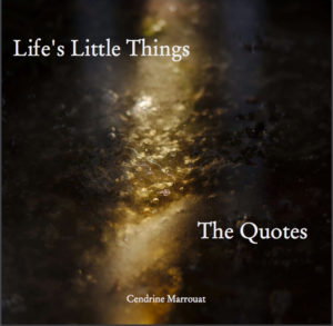 Cendrine Marrouat Life's Little Things cover