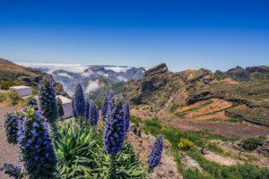 Pico do Areeiro Madeira Portogallo cosa vedere e fare