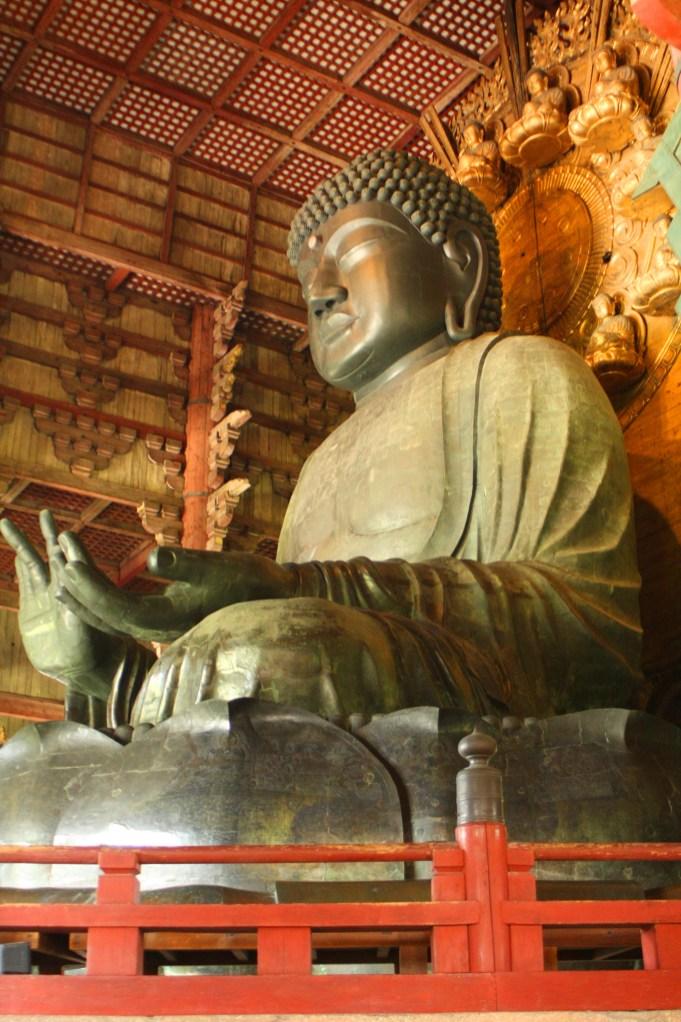 Giappone templi nara cervi giapponese (1)
