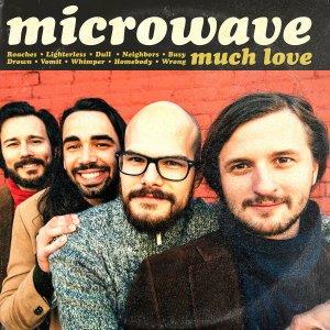 microwave - much love