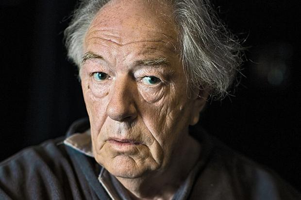 Image result for michael gambon