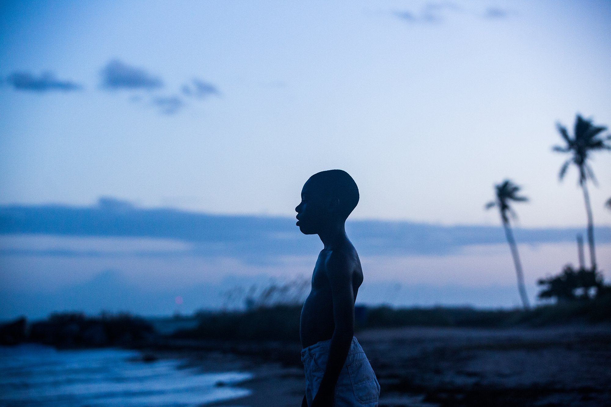 Barry Jenkins. Moonlight. 2016.