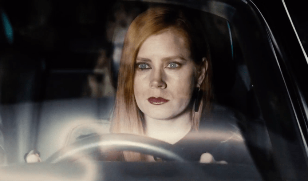 Image result for nocturnal animals film