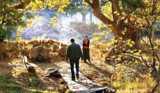 'The Wild Pear Tree' Trailer: Nuri Bilge Ceylan Returns With a Playful Epic