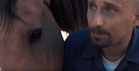Matthias Schoenaerts in The Mustang trailer