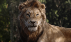 Life After 'The Lion King': Why the Fall Movie Season Has Promise — IndieWire's Movie Podcast