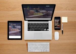 nolivos-espinosa-consultores.legales-indigital-diseño-web-responsive