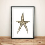 Watercolour-starfish