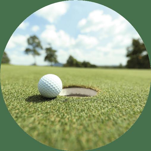 Golf turf category image