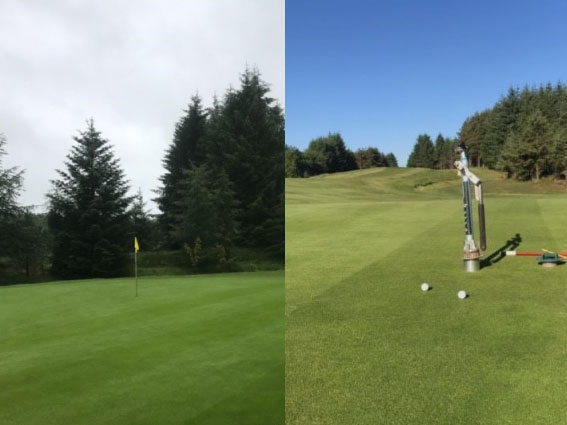 Left: 24 hours after application of Optik Bronco. Right: 5 days after application of Optik Bronco