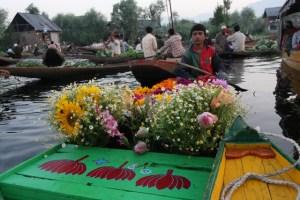 Il mercato galleggiante sul Lago Dal, Srinagar