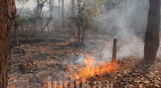 Reportage fotografico: dal cuore del Dantevada, la terra dei Maoisti