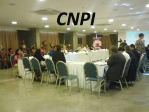Reunião da Comissão Nacional de Política Indigensta