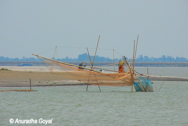 मछली पकड़ने के जाल - माजुली