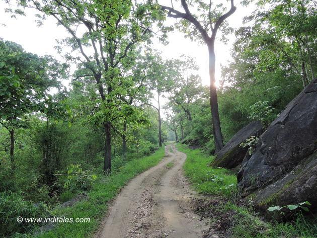 कान्हा राष्ट्रीय उद्यान के कच्चे रास्स्ते