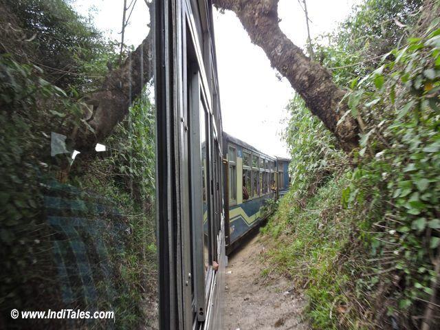 पहाड़ों को छू कर जाती दार्जीलिंग हिमालय रेल