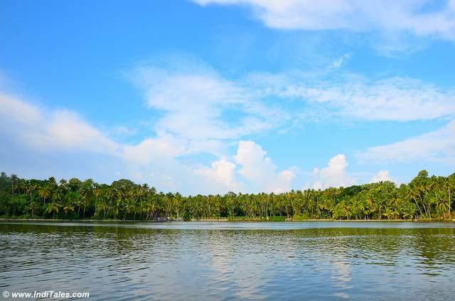 अष्टमुडी झील - केरल