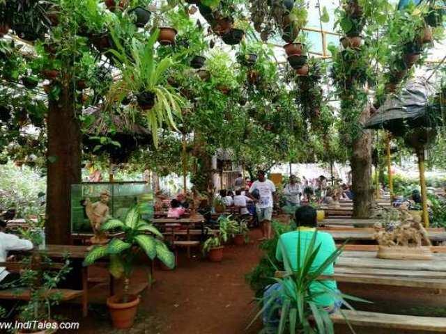 जंगल कैफे - दूधसागर के पास जलपान के लिए