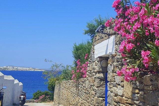 मिकोनोस द्वीप के समुद्रतट को ले जाते संकरे रास्ते