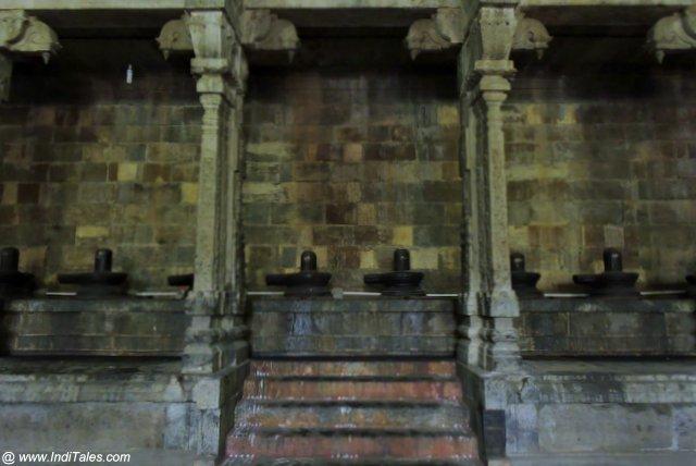 १००८ शिवलिंग - एकम्बरेश्वर मंदिर कांचीपुरम