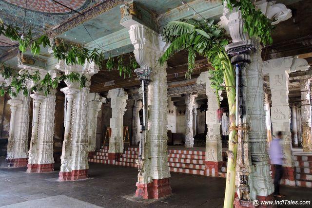शीश सभा मंडप के रमणीय स्तम्भ
