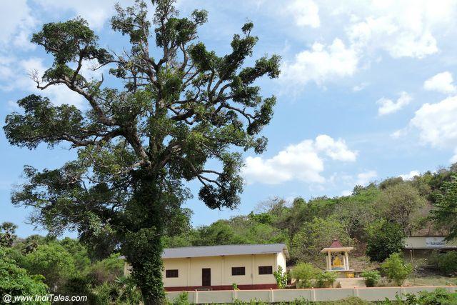 कन्निया का बौद्ध मठ
