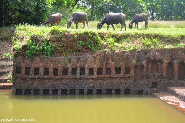 १०८ मंदिर - दीवार द्वीप