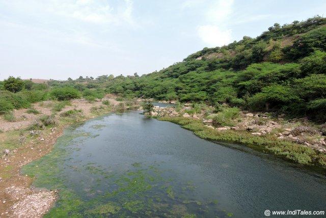 बाघिनी नदी