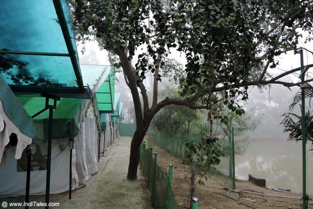 ताल किनारे तम्बू में रहना का आनंद