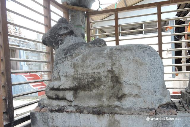 Chola Era Nandi Statue