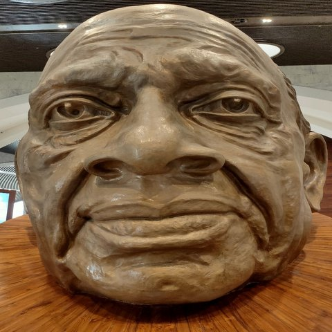 Sardar Patel's face in the statue of unity