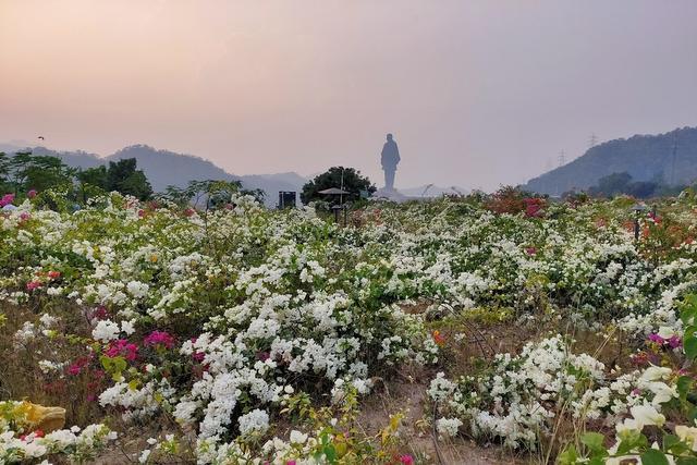 Flower Valley - Kevadia