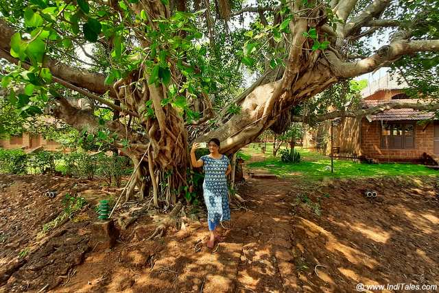 Nature Walks in Gokarna
