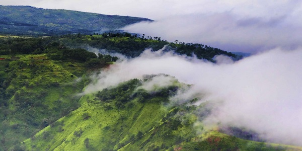 Clouds of Meghalaya, you can shake hands with.